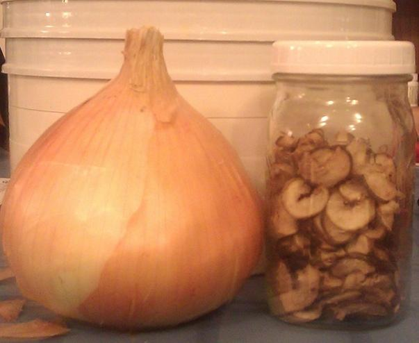One onion is now in the jar!
