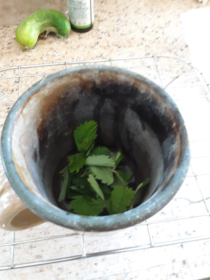 Leaves in cup