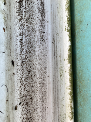 Clean Gutter - Closeup