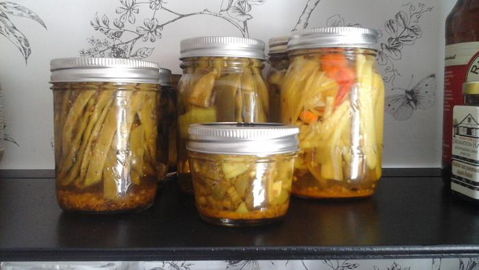 pickling -dilly beans