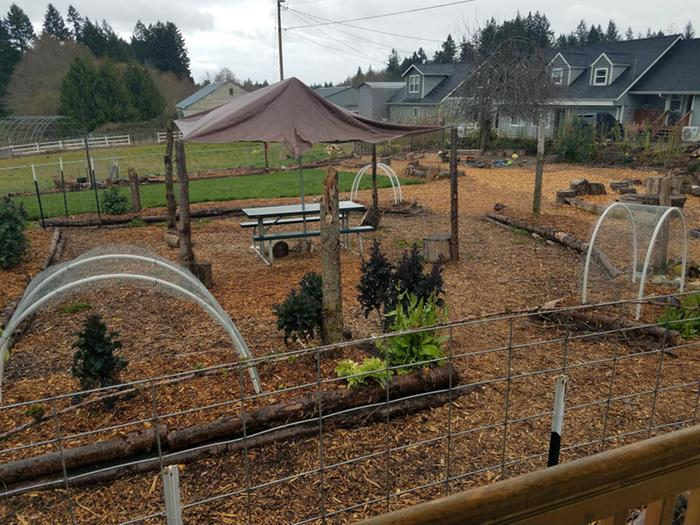 Kitchen garden entering its 2nd year--added new arched trellises for peas and some climbing beans later.
