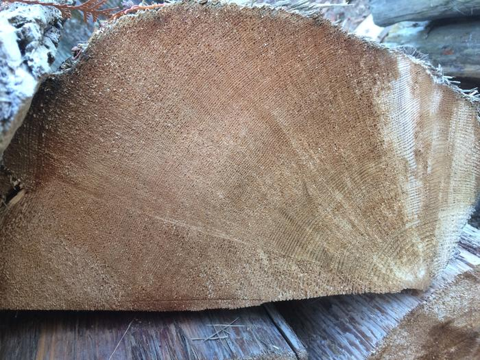 picture of endgrain. Than you need to check out the end grain and make sure you are using quality shakes