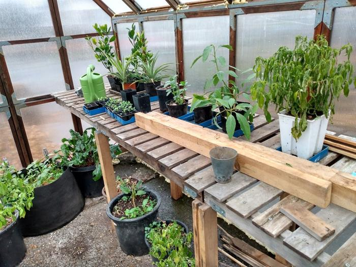 Potting bench on North side