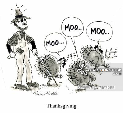 [Thumbnail for turkeys-moo.jpg]