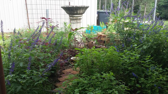 Little pathway to access more herbs