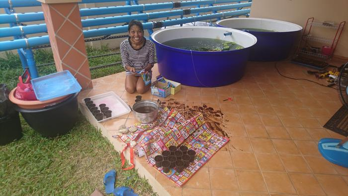 and after a few days I was the manager of my own backyard aquaponics farm... I still didn't know what I was doing but I could put some seeds into the pots... well what to say more?