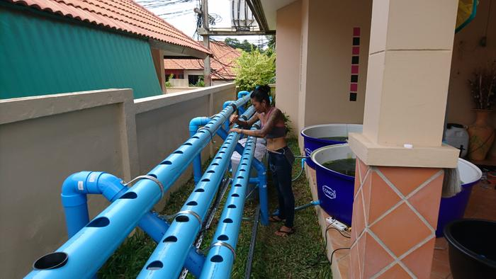 Pipes can be a hassle, they need always be balanced and it takes a lot of effort to get the water levels equal.