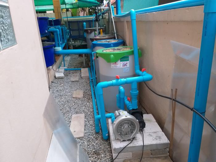 The membrane air compressor is changed to a vortex blower because oxygen supply is the stand and fall of Aquaponics, the more the better