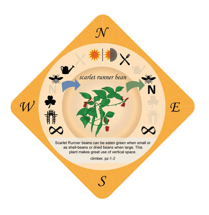 food forest card game