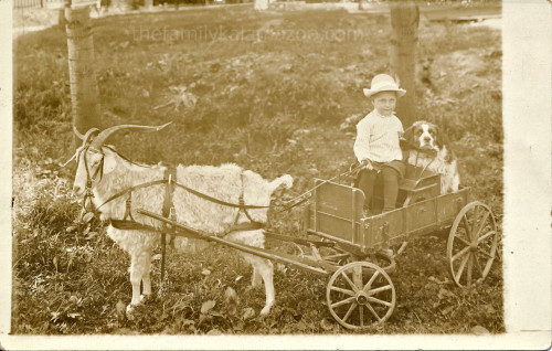 old photo (not mine) showing a goat pulling a small cart