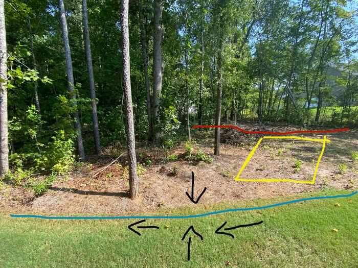 Mid section. Red: property line. Yellow: future shed. Blue: water drain path moving left. Black: contours.