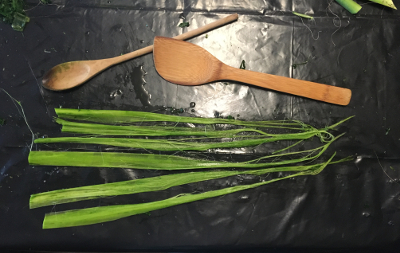 Spoons worked best - the larger flat spoon for pounding on the leaves and the narrower spoon to remove the wax and chlorophyll layer