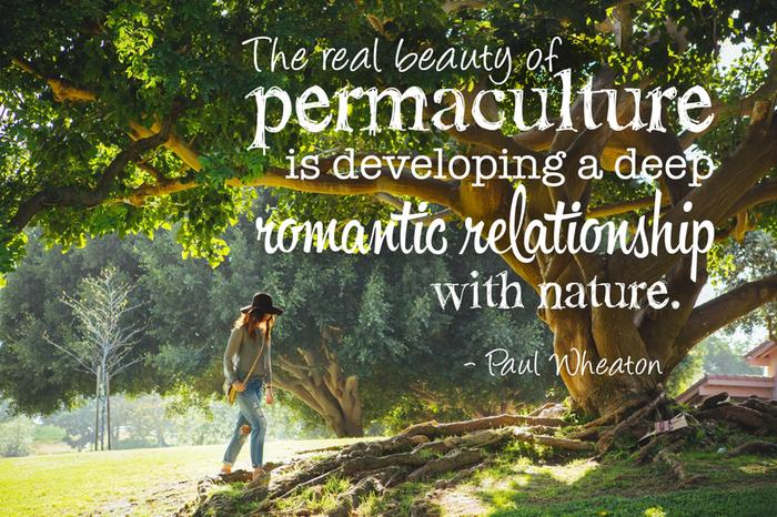 the real beauty of permaculture is developing a deep romatic relationship with nature