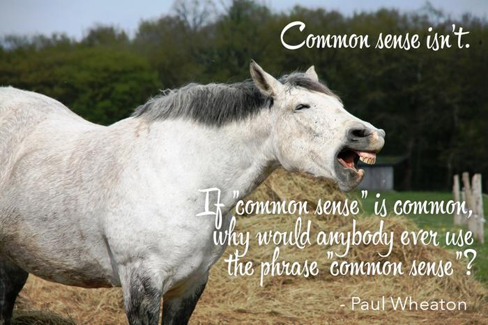 If common sense is common, why does anybody ever use the term common sense?