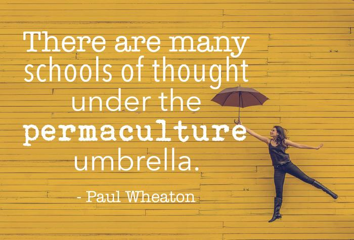 there are so many schools of thought under the permaculture umbrella.