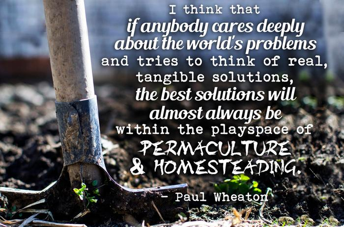 I think that if anybody cares deeply about the worlds problems and tries to think of real tangible solutions, the best solutions will almost always be within the playspace of permaculture and homesteading.