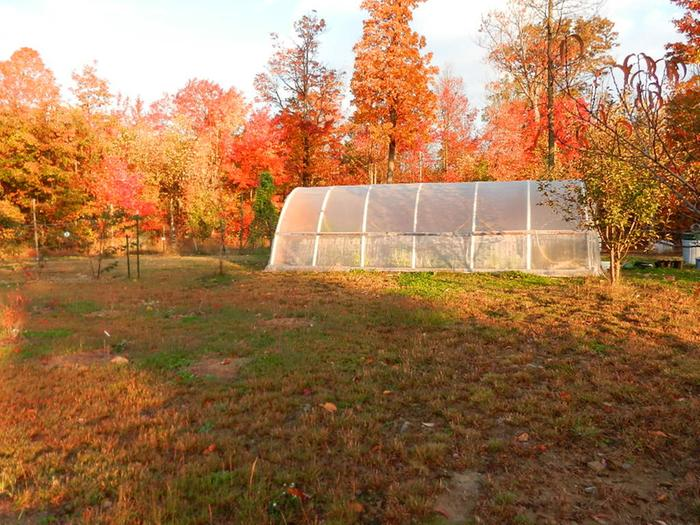 Hoop house in the distance