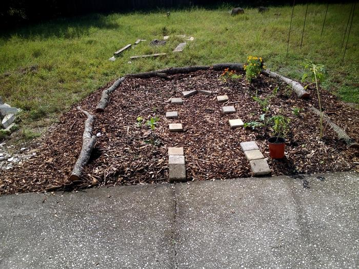 sheet mulched patio bed