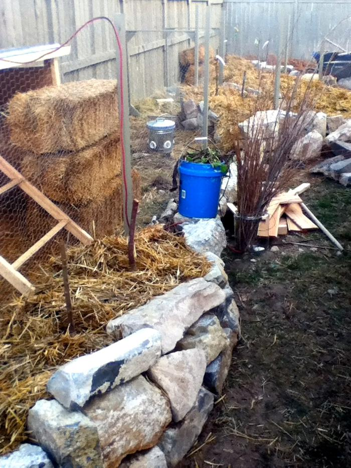 fruit trees, bucket of comfrey, willow jar, paddocks, and tiny rock walls