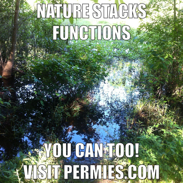 [Thumbnail for nature-stacks-functions.jpg]