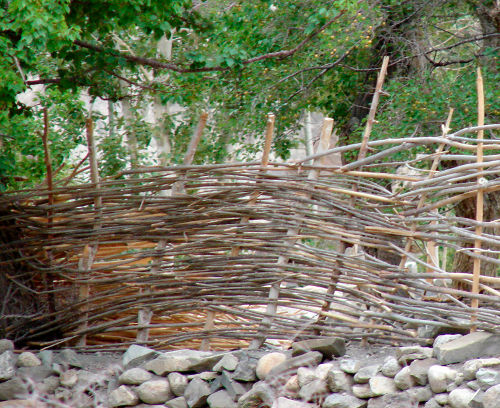 [Thumbnail for Woven-willow-fencing-in-Ladakh.JPG]