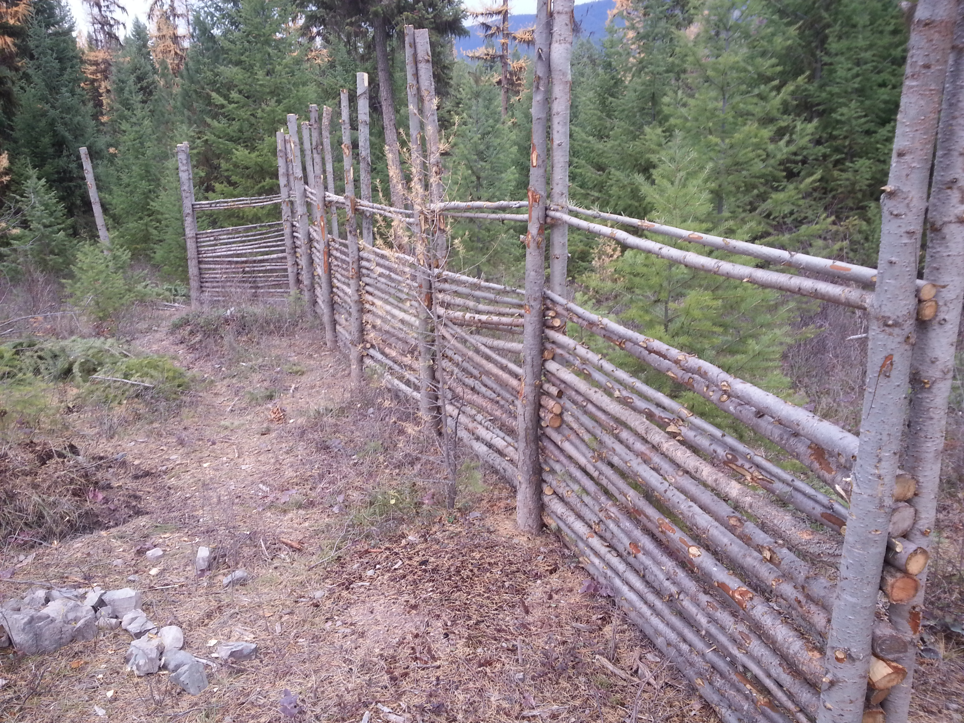 junkpole fence freaky cheap chicken deer fence made from wood