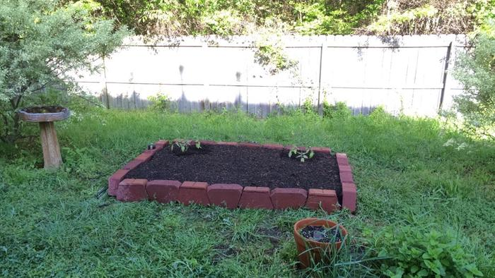 my first raised bed