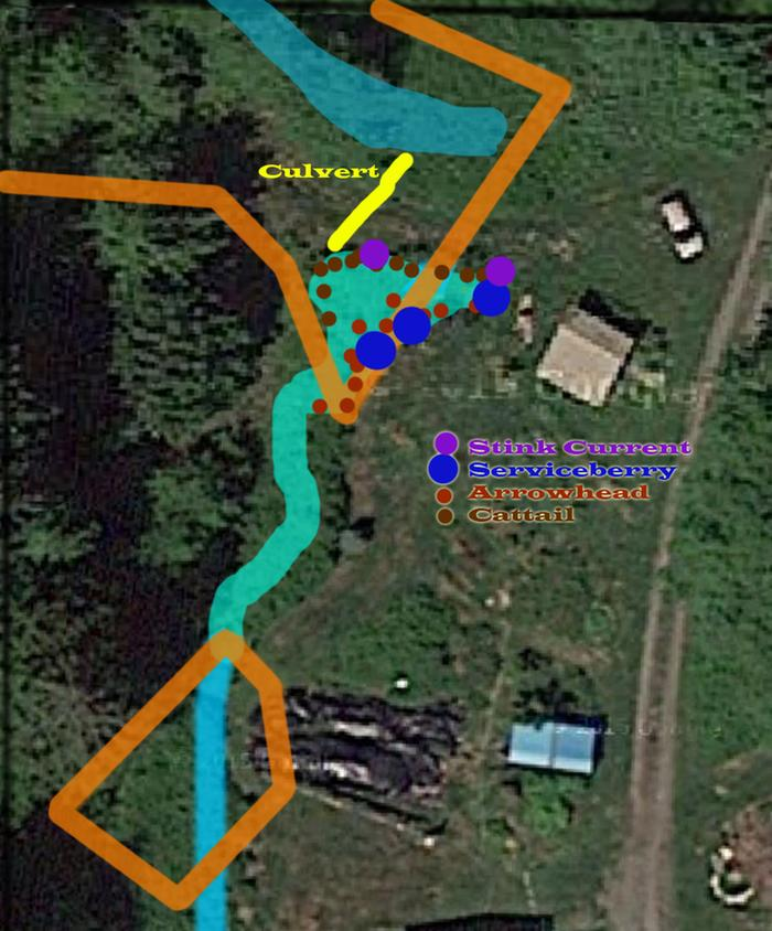 Of wetlands duck poop previous owners and the for Duck slide plans