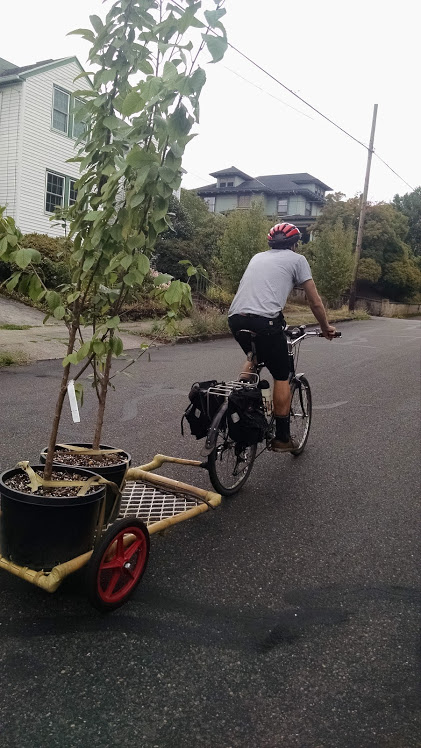 [Thumbnail for trees-on-bike.jpg]