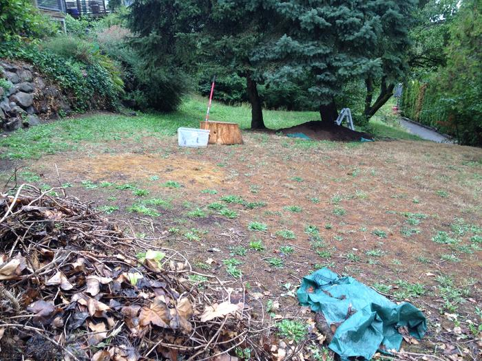 The yard situation before garden