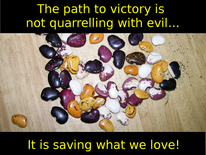 The path to victory is not quarrelling with evil... It is saving what we love!