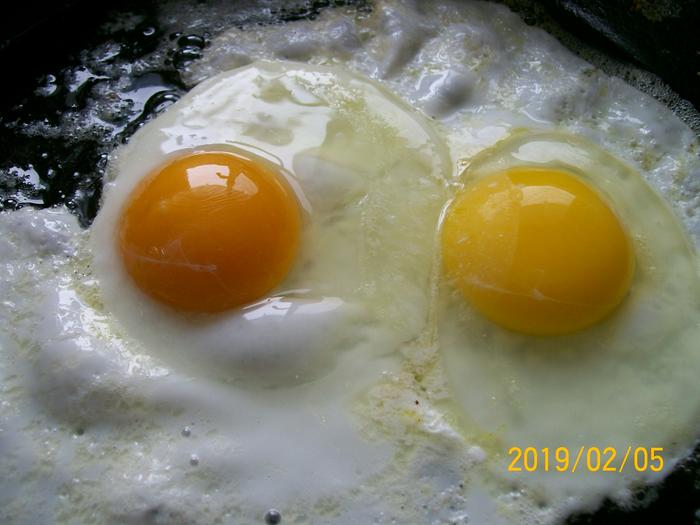 Comparing an egg from my flock (dark orange) to grocery store egg.