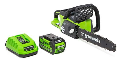 [Thumbnail for Greenworks-16-Inch-40V-Cordless-Chainsaw.JPG]