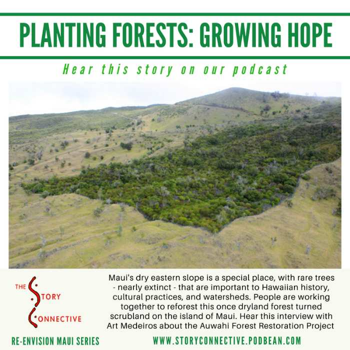 [Thumbnail for Planting_Forests_-_Growing_Hope_-_Art_Medeiros_(StoryConnective.org).png]