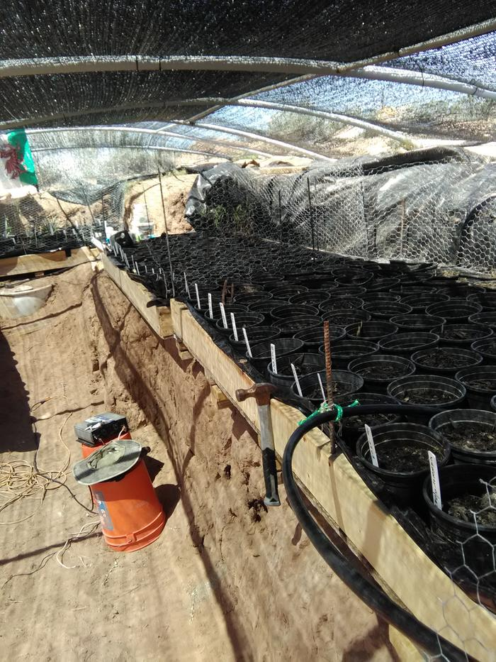 [Thumbnail for soil-aquaponics-solar-pump.jpg]
