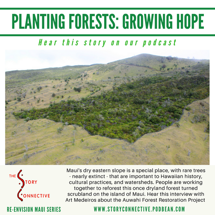 Planting Forests, Growing Hope - Art Medeiros (StoryConnective.org)
