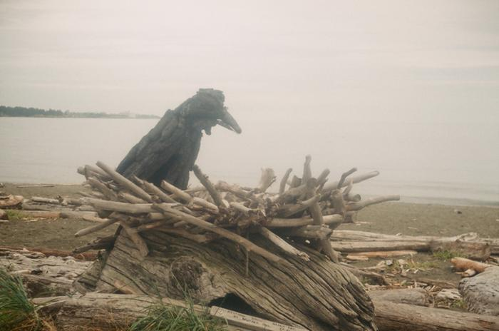 raven driftwood art taken with argus c3